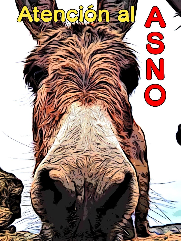 Imagen de un ASNO para recordarnos una regla personal de acentuación