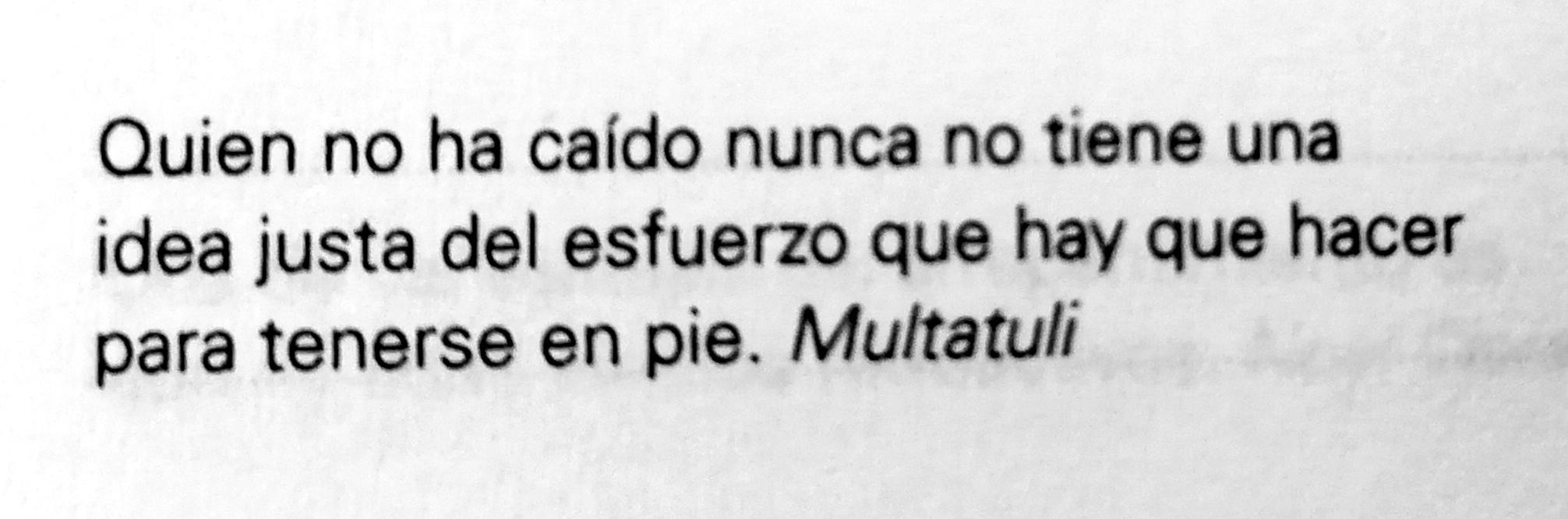 Frase de Multatuli