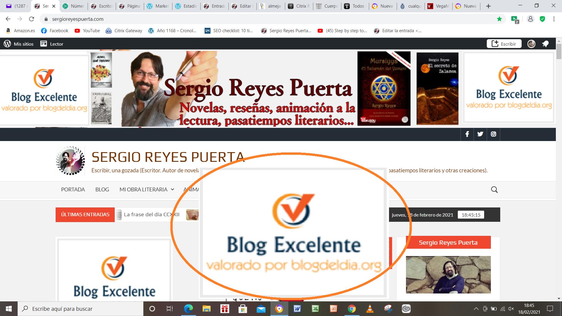 Página web de Sergio Reyes con el premio Blog del día otorgado (montaje)
